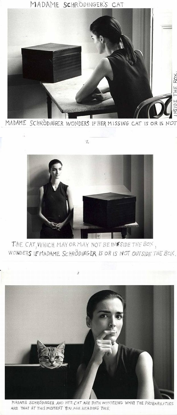 The Cat by Duane Michals