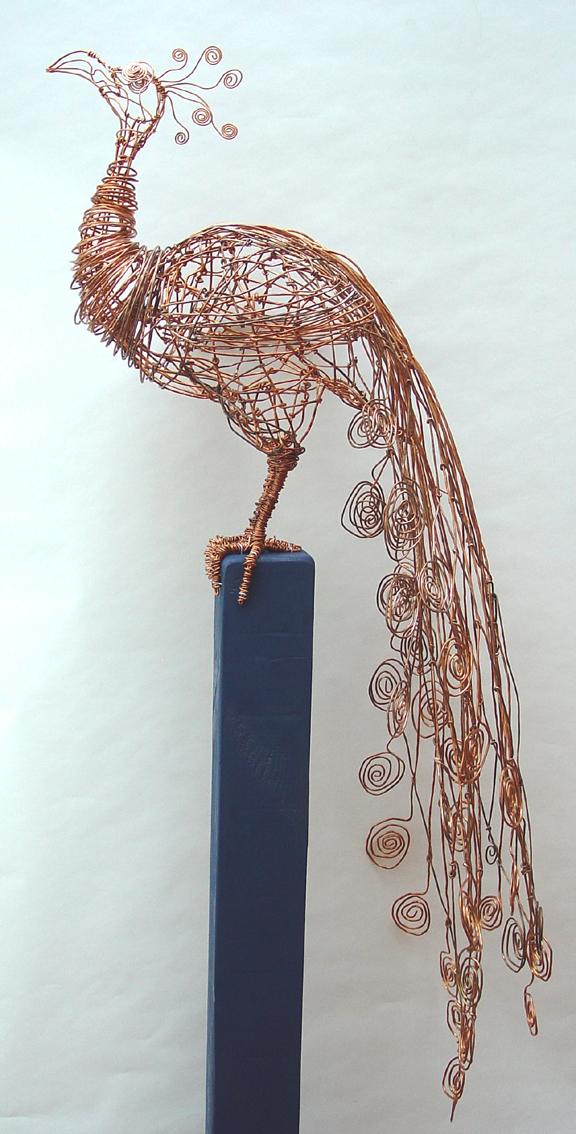 copper peacock I