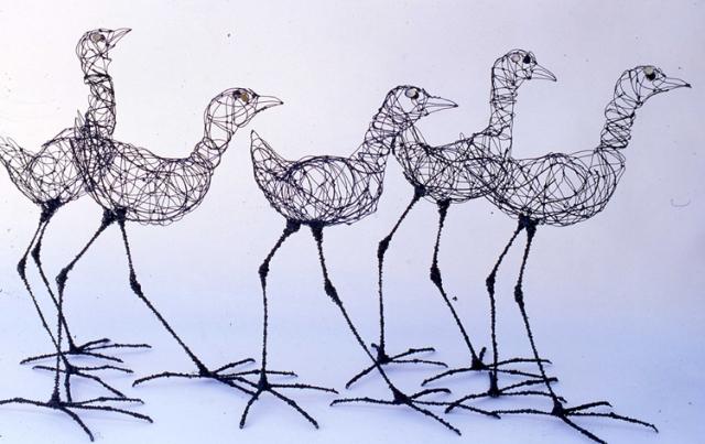 Long legged birds 40-50cm high