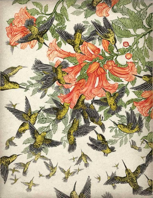 hummingbirds_micro_yuko_shimizu